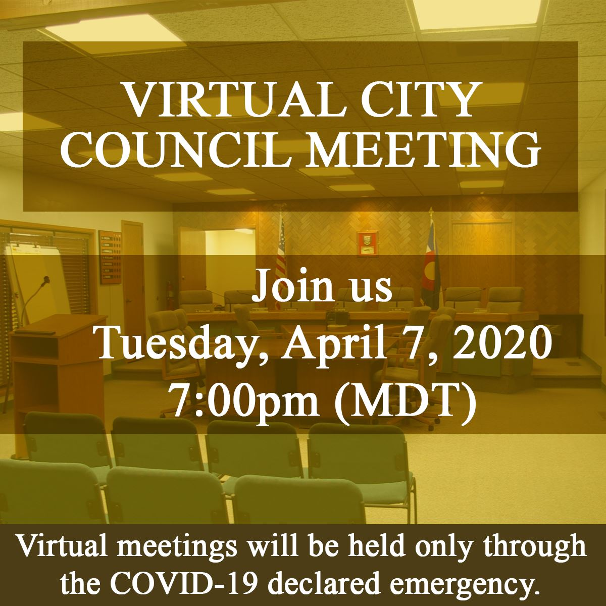 Virtual Council Meeting Website
